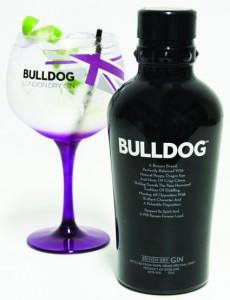 Bebidas coloridas Bottle + Gin Tonic
