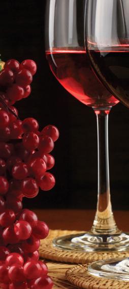 raio x do vinho